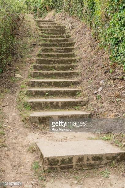 steps - steeping stock pictures, royalty-free photos & images