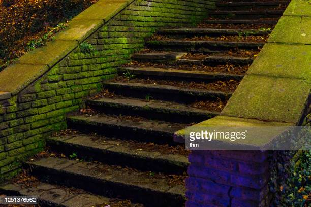 steps - staircase stock pictures, royalty-free photos & images