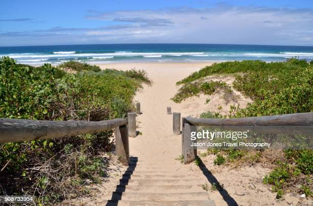steps to an empty beach - eastern cape stock pictures, royalty-free photos & images