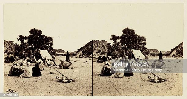 A stereoscopic photograph of Egyptians with their camels in a camp in Southern Egypt taken in 1859 by Francis Frith Francis Frith was a pioneer of...