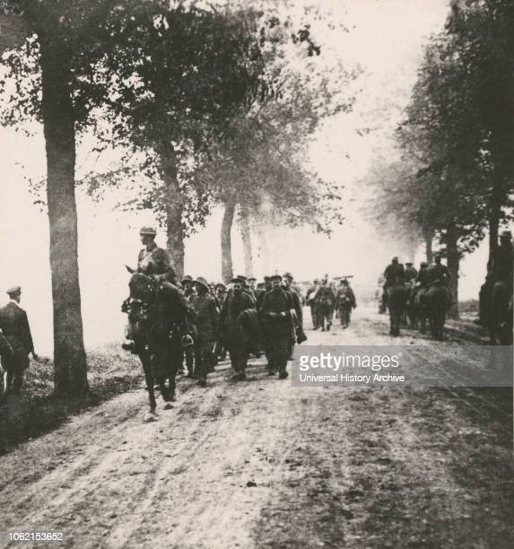Stereoview WW1 The Great War Realistic Travels Military photographs circa 1918 Moving up with the French 75Õs during the attack on Thiepval Ridge we...