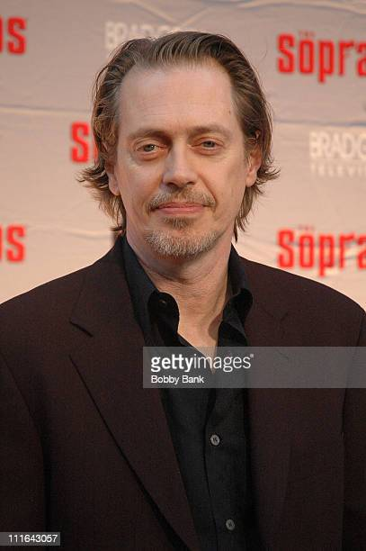 Steve Buscemi during The Sopranos Final Season World Premiere Arrivals at Radio City Music Hall in New York City New York United States