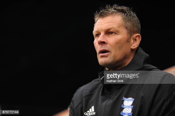 Steve Cotterill manager of Birmingham City looks on during the Sky Bet Championship match between Birmingham City and Nottingham Forest at St Andrews...