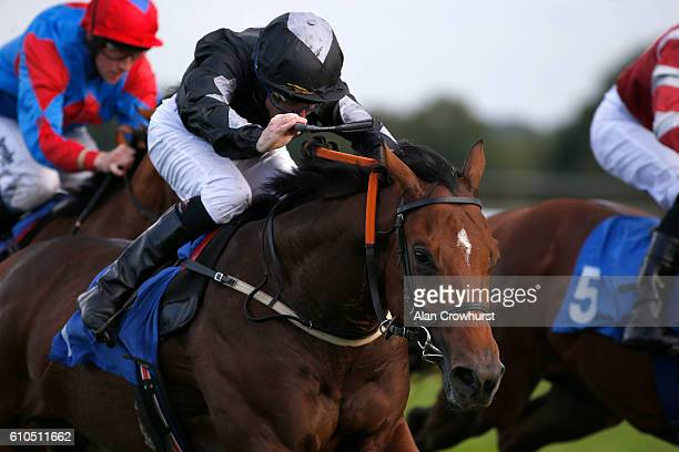 Steve Drowne riding Drop Kick Murphi win The Nash Consultancy Nursery Handicap Stakes at Bath Racecourse on September 26 2016 in Bath England