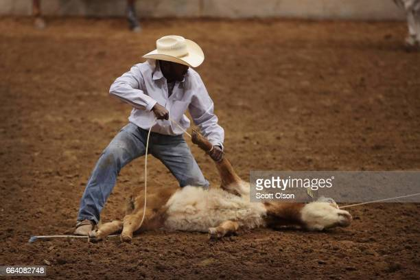 Steve Green competes in the calf roping event at the Bill Pickett Invitational Rodeo on March 31 2017 in Memphis Tennessee The Bill Pickett Rodeo is...
