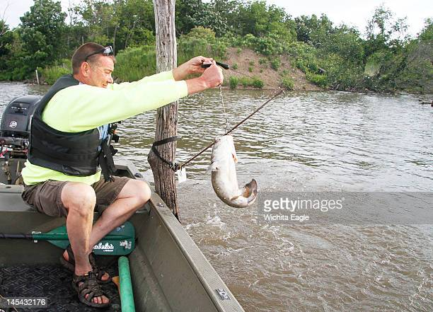 Steve Green lifts a small flathead catfish aboard after it hit a green sunfish on one of his Topcat rigs at El Dorado Reservoir in Kansas This year...