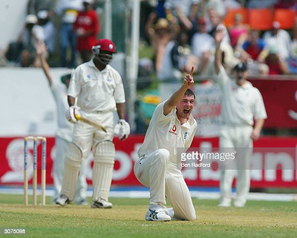 Steve Harmison of England appeals unsuccessfully for the wicket of West Indies Captain Brian Lara during the Cable and Wireless 1st Test match...