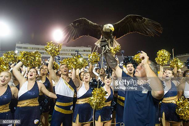 Steve Hein with the Georgia Southern Eagles holds up the eagle Freedom after defeating the Bowling Green Falcons on December 23 2015 at Ladd Peebles...