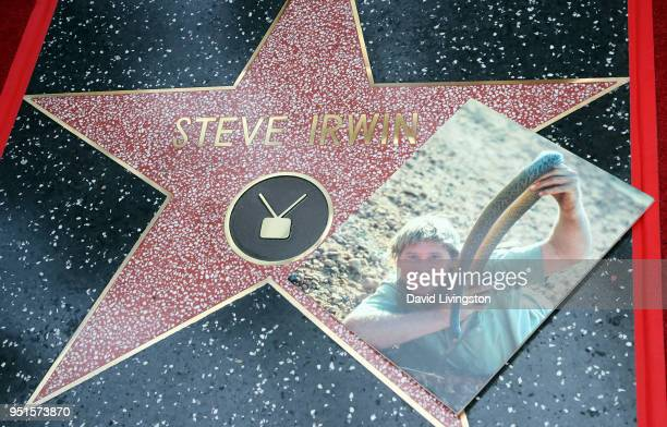Steve Irwin is honored posthumously with a Star on the Hollywood Walk of Fame on April 26, 2018 in Hollywood, California.