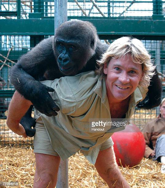 Steve Irwin poses at Australia Zoo August 6, 2003 in Beerwah, Australia.
