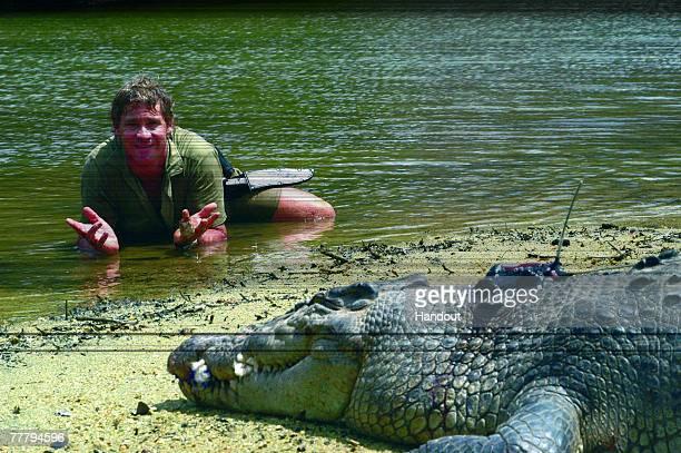 Steve Irwin poses with a crocodile at Australia Zoo September 16, 2006 in Beerwah, Australia.