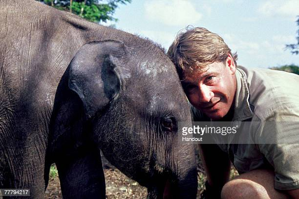 Steve Irwin poses with an elephant at Australia Zoo September 16, 2006 in Beerwah, Australia.