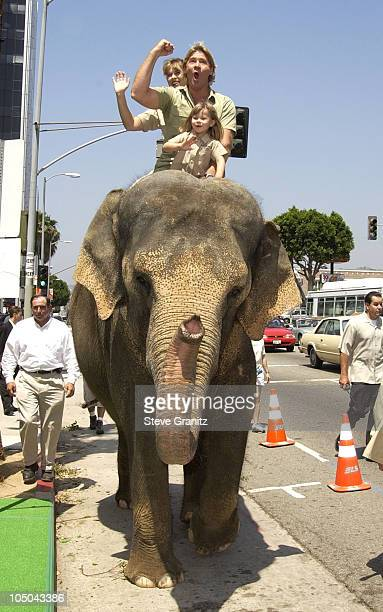 "Steve Irwin, Terri Irwin & daughter Bindi during ""The Crocodile Hunter: Collision Course"" Premiere at Arclight Cinerama Dome in Hollywood,..."