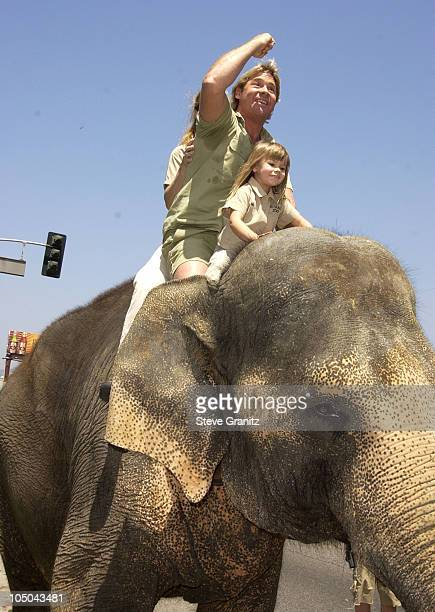 "Steve Irwin, Terri Irwin & daughter during ""The Crocodile Hunter: Collision Course"" Premiere at Arclight Cinerama Dome in Hollywood, California,..."