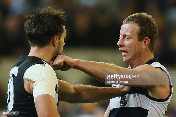 Steve Johnson of the Cats lands a punch on Nathan Brown of the Magpies during the round 22 AFL match between the Geelong Cats and the Collingwood...