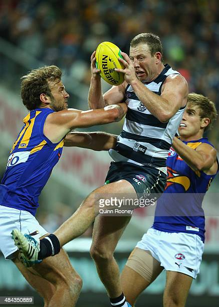 Steve Johnson of the Cats marks infront of Will Schofield of the Eagles during the round four AFL match between the Geelong Cats and the West Coast...