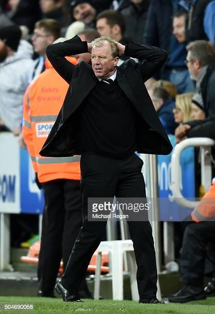 Steve McLaren manager of Newcastle United reacts during the Barclays Premier League match between Newcastle United and Manchester United at St James'...