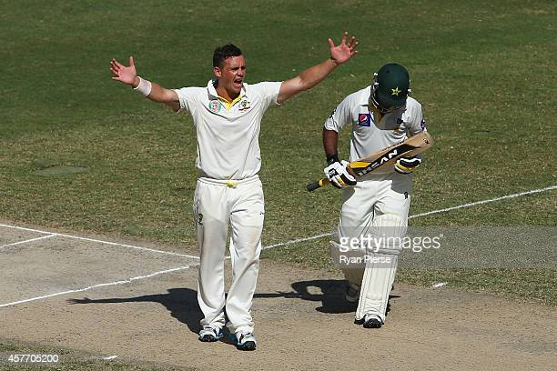 Steve O'Keefe of Australia celebrates after taking his first test wicket by dismissing Asad Shafiq of Pakistan during Day Two of the First Test...