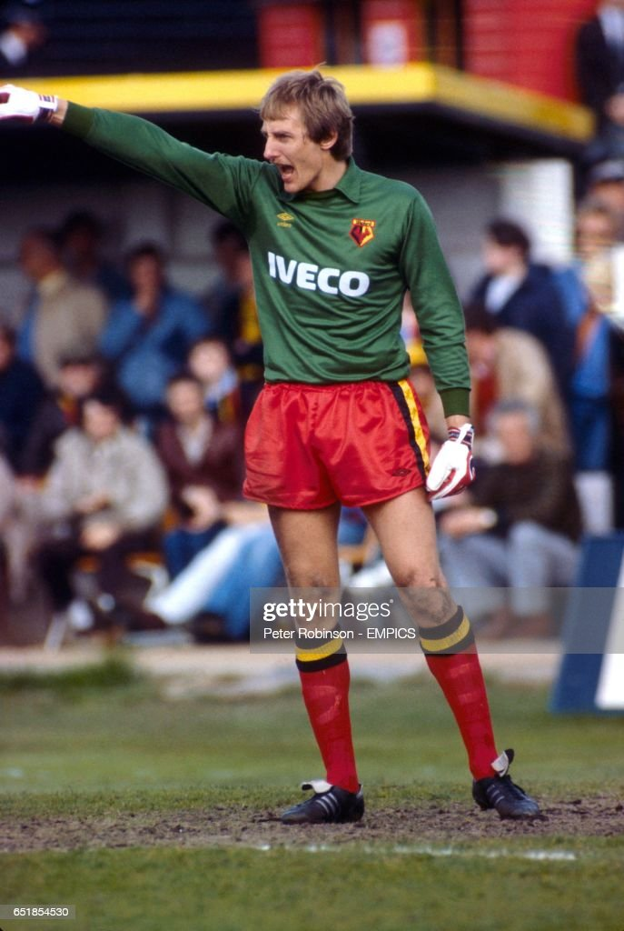 Steve Sherwood, Watford Goalkeeper