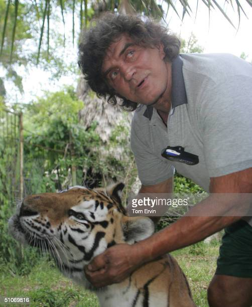 Steve Sipek caresses Princess a 16yearold tiger July 14 2004 in Loxahatchee Florida Sipek's 6yearold Bengal tiger Bobo the 600pound cat who escaped...