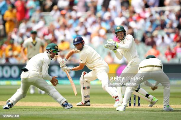 Steve Smith of Australia catches Alastair Cook of England off a delivery by team mate Nathan Lyon during day three of the Second Test match during...