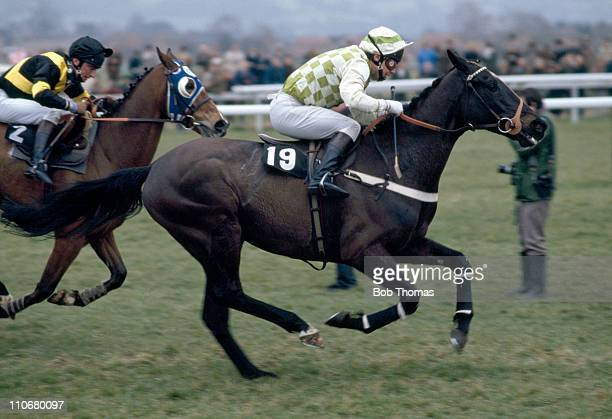 Steve SmithEccles on Seen You Then leads from Barnbrook ridden by Simon Sherwood en route to winning the Waterford Crystal Champion Hurdle race at...