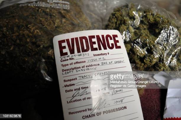 BEACH CA Ð Steve Stiles shows off some two pounds of marijuana the LBPD returned to him after the local court ruled in his favor Stiles' 'herb' was...