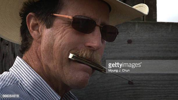 Steve Tellam clenches a knife in his teeth that he uses to castrate bulls while watching helpers rope calves during a recent roundup in Ramona CA The...