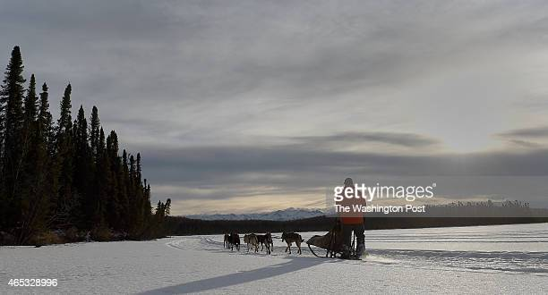 Steve Watkins Jr runs part of his team on the original Iditarod trail as he prepares to compete in the Iditarod and climb Mt Everest on February 20...