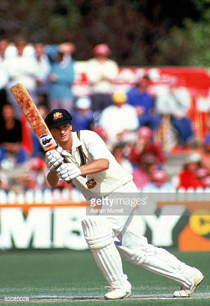 Steve Waugh of Australia in action during day two of the Third Ashes cricket test between Australia and England held at the Adelaide Oval December...