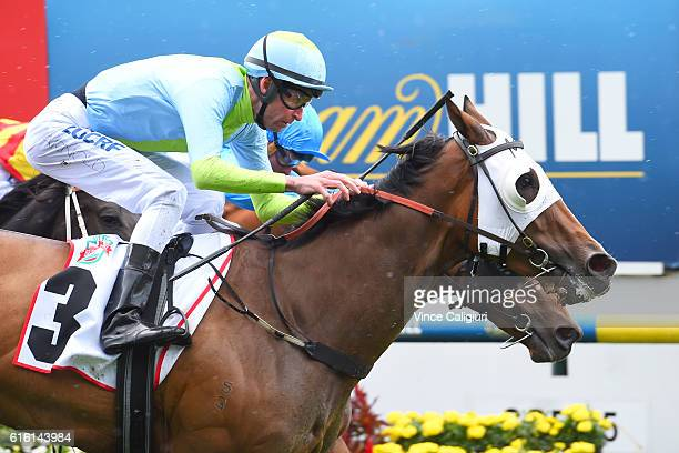 Steven Arnold riding Sweet Sherry wins Race 3 Crockett Stakes during Cox Plate Day at Moonee Valley Racecourse on October 22 2016 in Melbourne...