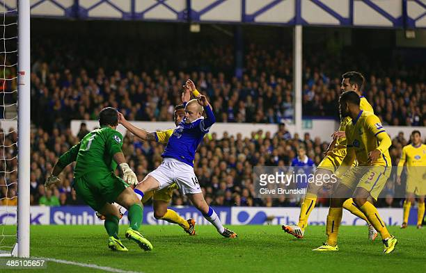 Steven Naismith of Everton scores their first goal past Julian Speroni of Crystal Palace during the Barclays Premier League match between Everton and...