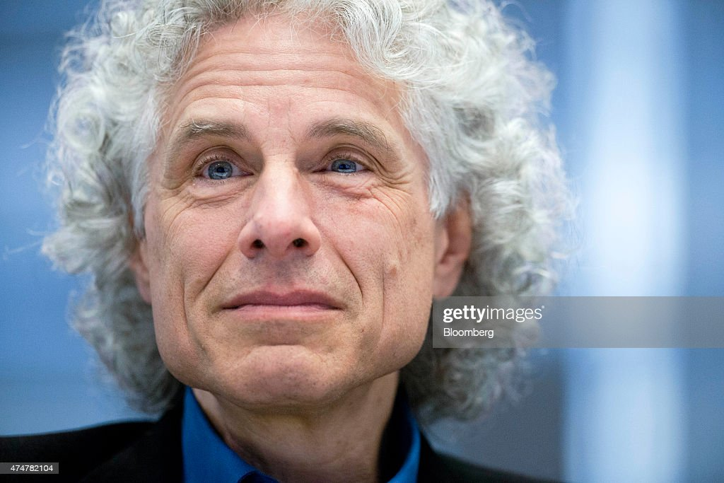 Author And Professor Steven Pinker Interview : ニュース写真