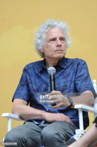 Steven Pinker speaks onstage during OZY Fest 2018 at Rumsey Playfield Central Park on July 21 2018 in New York City