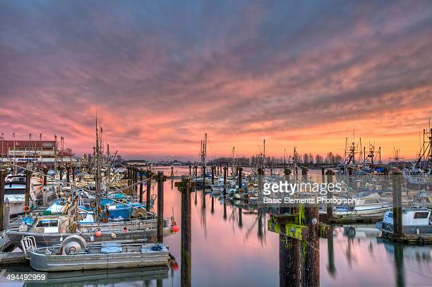 steveston sunset in pink - fishing village stock pictures, royalty-free photos & images