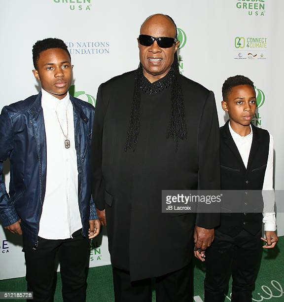 Stevie Wonder attends Global Green USA's 13th annual preOscar party at Mr C Beverly Hills on February 24 2016 in Los Angeles California