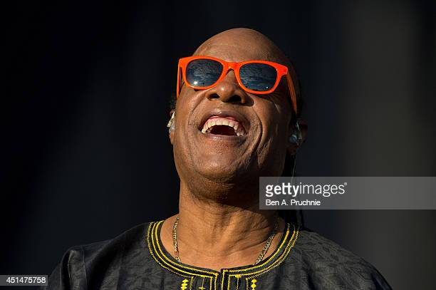 Stevie Wonder performs on Day 2 of the Calling Festival at Clapham Common on June 29 2014 in London England