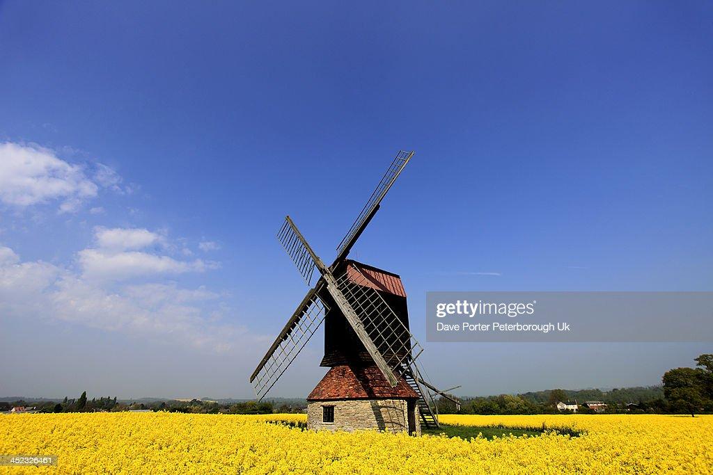 Stevington Windmill, Stevington village : Stock Photo