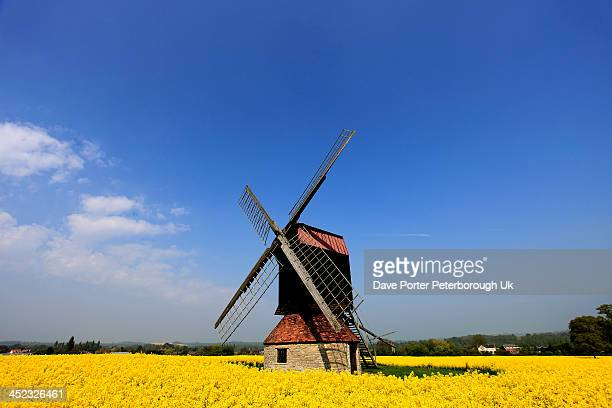 stevington windmill, stevington village - bedfordshire stock photos and pictures