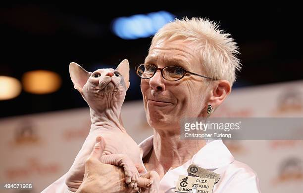 Steward hold s a Sphinx cat during the Governing Council of the Cat Fancy's 'Supreme Championship Cat Show' at the NEC Arena on October 24, 2015 in...