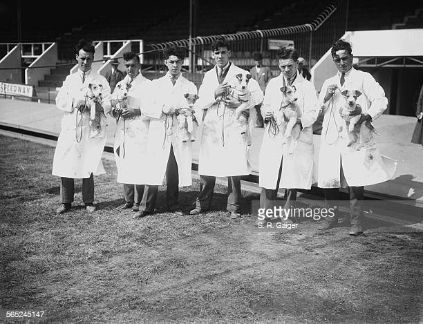 Stewards holding some of the entrants in a racing trials event for Fox Terriers at Wimbledon Stadium, London, 28th June 1928.