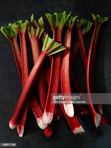 Stöcke an frischen Rhabarber mit langen Beine und pink