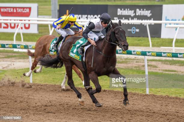 Easy Drama after winning the Briseis Club BM64 Handicap at Geelong Synthetic Racecourse on September 21 2018 in Geelong Australia