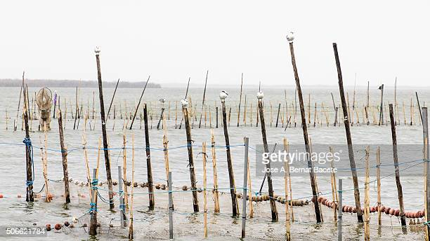 Sticks with networks and traps for the traditional fishing of the 'LLisa'