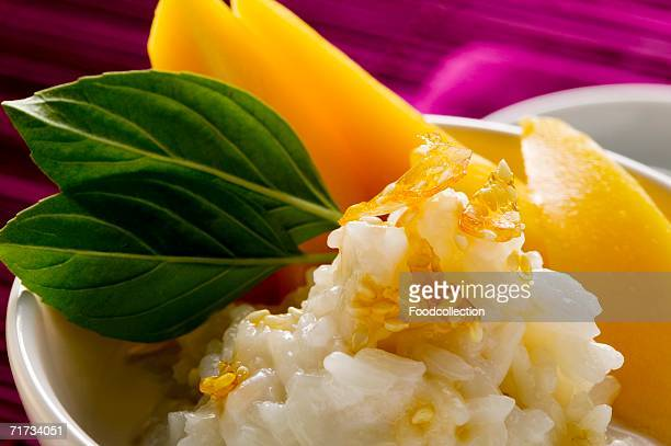 Sticky rice with mango and coconut milk (close-up)