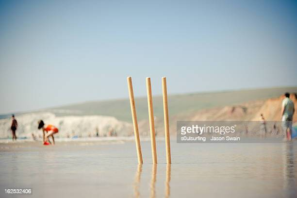 sticky wicket - beach cricket stock pictures, royalty-free photos & images