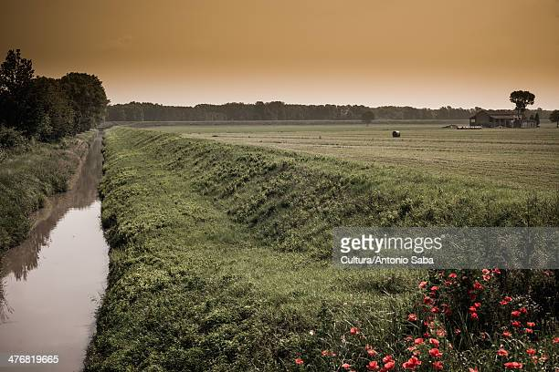 still creek in rural landscape - ditch stock photos and pictures