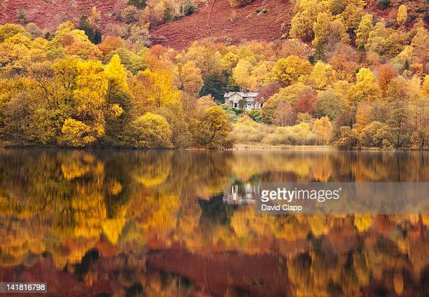 still lakeside reflections at grasmere in the lake district, cumbria, england, uk - cumbria stock pictures, royalty-free photos & images