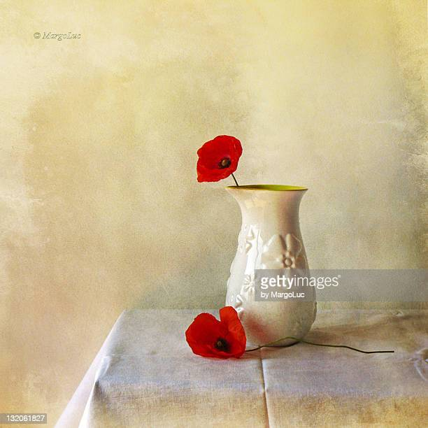 Still life and two poppies