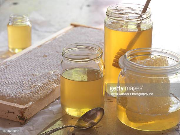 Still life - honey